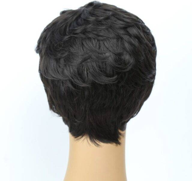 VeryYu Black Short Feathers Synthetic Wig Hair Extensions & Wigs  VeryYu the Best Online Store for Women Beauty and Wellness Products