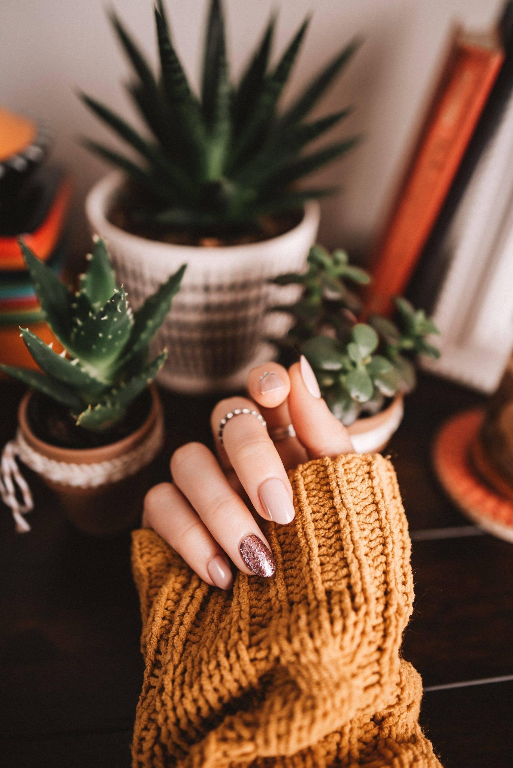 Veryyu Nails arts and tools